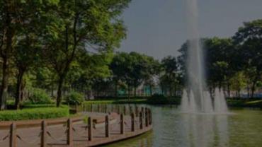 Khuôn viên cây xanh 16ha